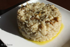 Risotto small